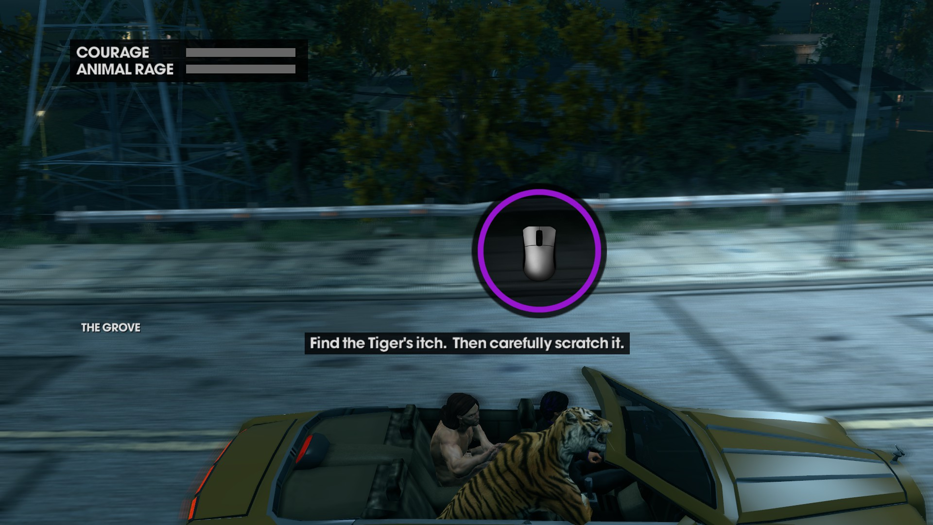 find the tiger's itch.jpg