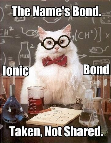 the_names_bond_ionic_bond_science_cat_meme.jpg