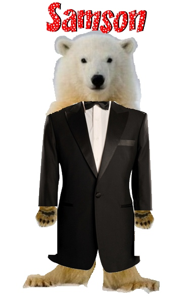 samson_the_polar_bear.jpg