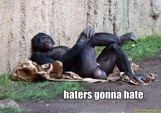 haters-gonna-hate-monkey-crossed%20legs-1291945299k.jpg